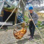 Shiraz Nomad Tours