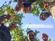 Travel to Iran - Letsvisitpersia