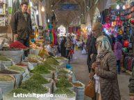 Vakil Complex Day Tour - Shiraz