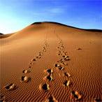 Varzaneh Desert - Iran desert tour