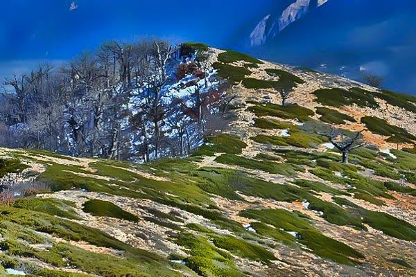 Hyrcanian Forests - Iran UNESCO sites
