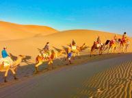 varzaneh desert camel riding